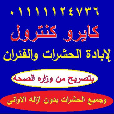 Large_1238307723