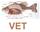 Veterinaryfish